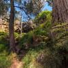 (2229) Sailors Falls, Victoria, Australia