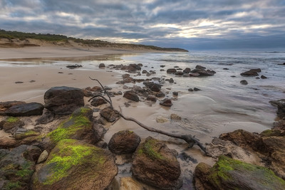 (2678) Red Rocks Beach, Victoria, Australia
