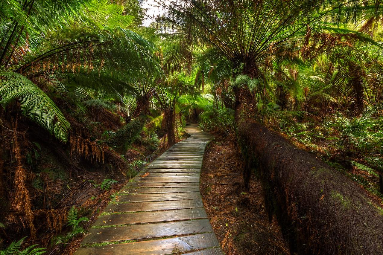 (2222) Maits Rest, Victoria, Australia