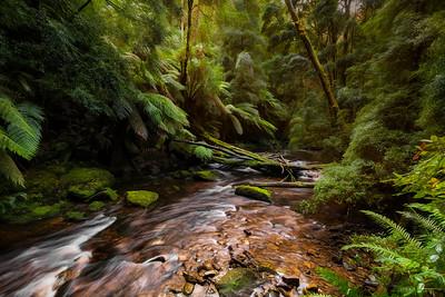 (2663) Nelson Falls, Tasmania, Australia