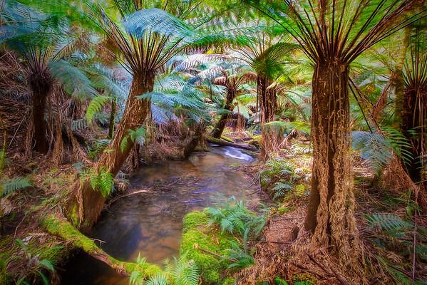 (1863) Melba Gully, Victoria, Australia