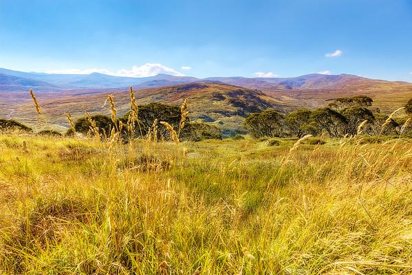 (1538) Charlotte Pass, New South Wales, Australia