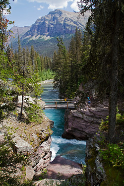 Bridge at Victoria Falls in Glacier National Park