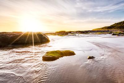 (Image#3154) Kennett River, Victoria, Australia