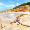 (1643) Squeaky Beach, Victoria, Australia