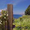 Wild flowers adorn this gate entrance to a private beach road off the Pacific Coast Hwy. heading north to Monterey, CA.