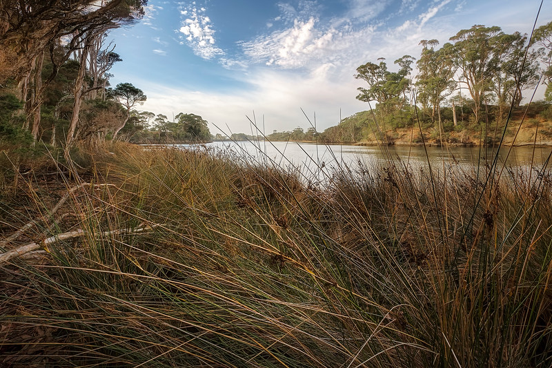(2550) Wynyard, Tasmania, Australia