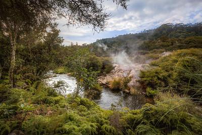(3050) Te Puia, New Zealand