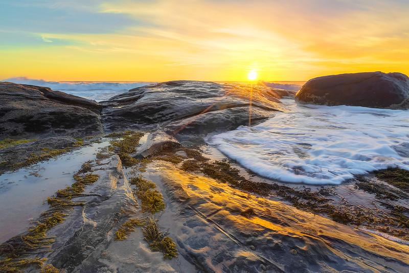 (2415) Kennett River, Victoria, Australia