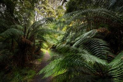 (Image#3155) Little Aire Falls, Victoria, Australia
