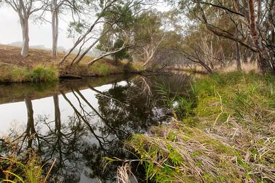 (Image#3190) Inverleigh, Victoria, Australia