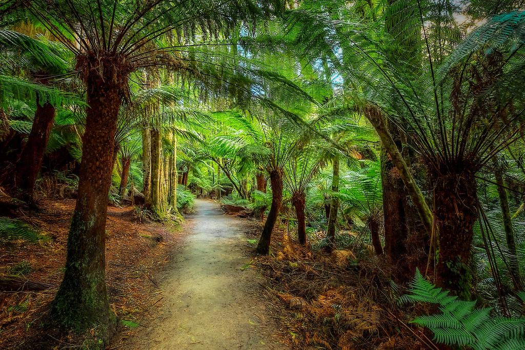 (2164) Maits Rest, Victoria, Australia