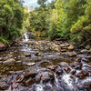(2718) Liffey Falls, Tasmania, Australia