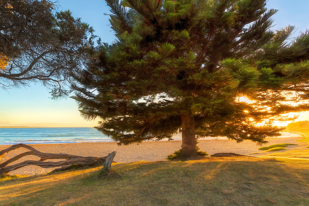 (2279) Torquay, Victoria, Australia