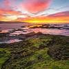 (1869) Anglesea, Victoria, Australia