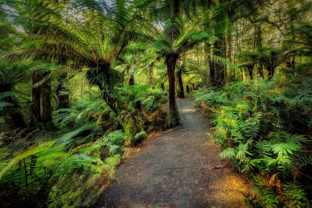 (2268) Maits Rest, Victoria, Australia