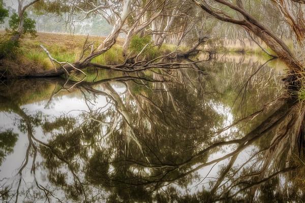(2536) Inverleigh, Victoria, Australia