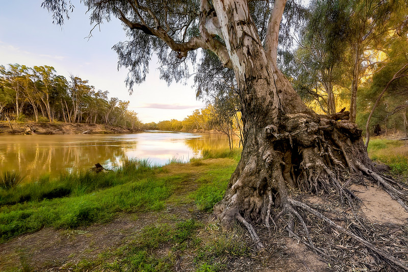 (2611) Murray River, Victoria, Australia
