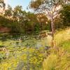 (1790) Werribee, Victoria, Australia