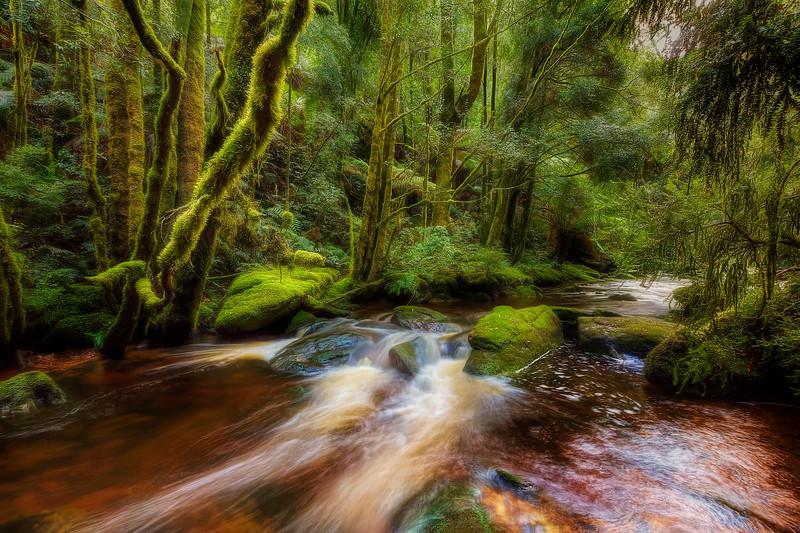 (2382) Nelson Falls, Tasmania, Australia