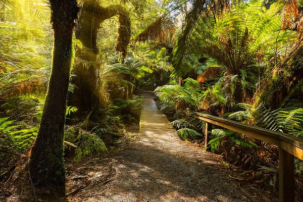 (2156) Maits Rest, Victoria, Australia