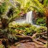 (1995) Hopetoun Falls, Victoria, Australia