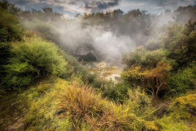 (2783) Te Puia, New Zealand