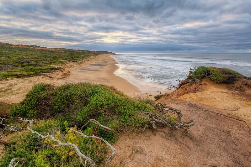 (2504) Red Rocks Beach, Victoria, Australia