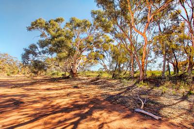 (1790) Pine Creek, New South Wales, Australia