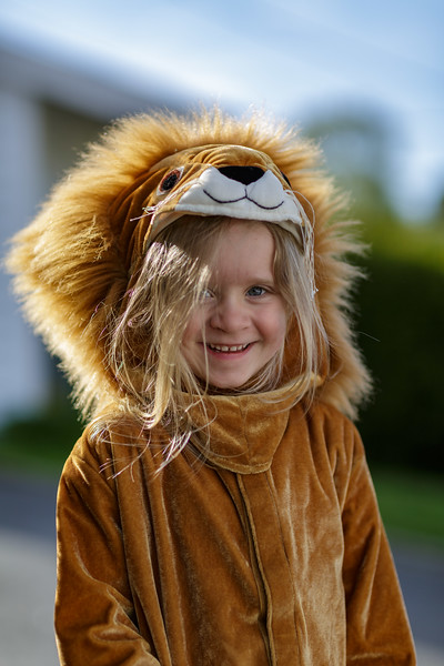 Løvehjerte