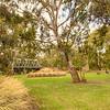 (1769) Queens Park, Victoria, Australia