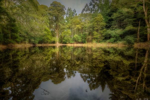 (2534) Sanatorium Lake, Victoria, Australia