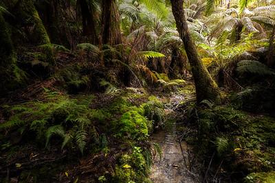 (3040) Little Aire Falls, Victoria, Australia