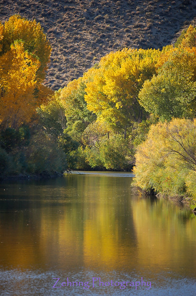 Beautiful color reflects on the Carson River, in the Carson Valley area of Nevada, named after the famous explorer Kit Carson as he pioneered a pass through the Sierra Nevadas from Nevada to California.
