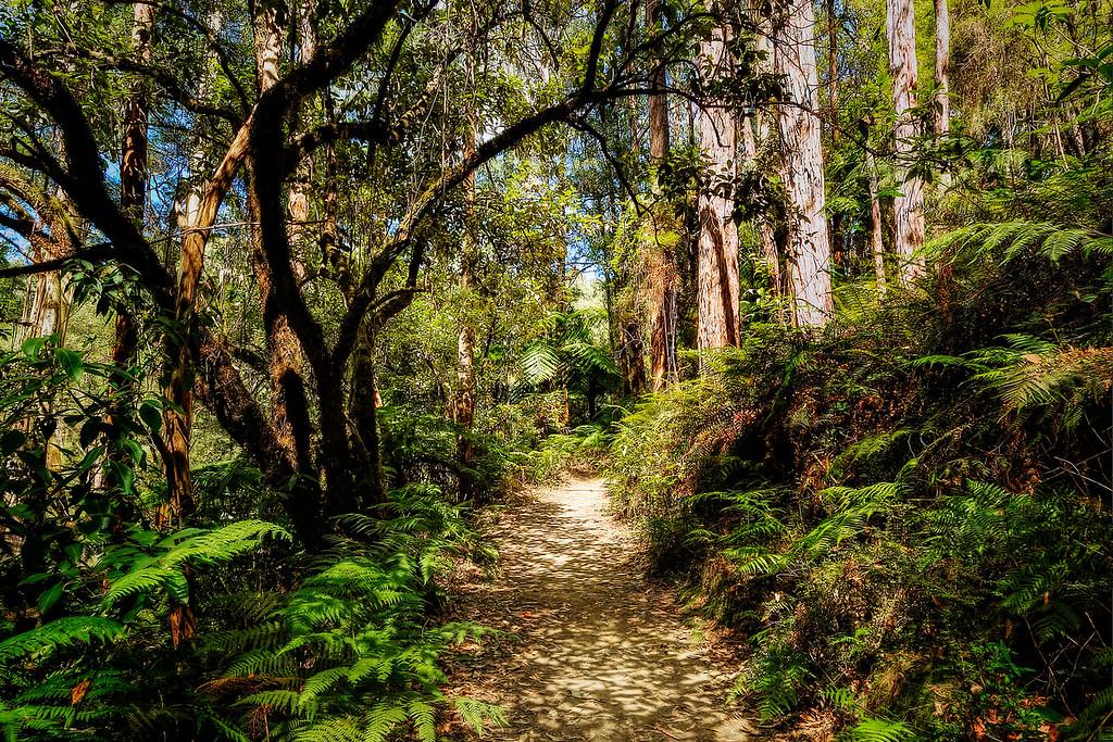 (2114) Lake Elizabeth, Victoria, Australia