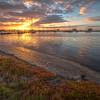 (0824) Limeburners Bay, Victoria, Australia