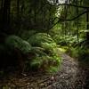 (3063) Little Aire Falls, Victoria, Australia