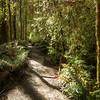 (3053) Little Aire Falls, Victoria, Australia