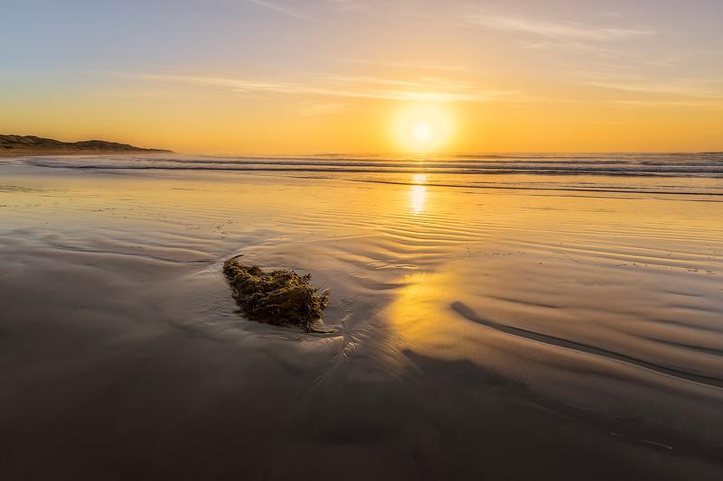 (2481) Bancoora Beach, Victoria, Australia