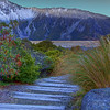 (0447) Mount Cook, South Island, New Zealand
