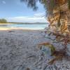 (1285) Wasp Head Beach, New South Wales, Australia