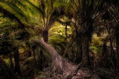 (2755) Maits Rest, Victoria, Australia