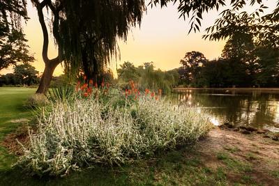 (Image#3506) Castlemaine, Victoria, Australia