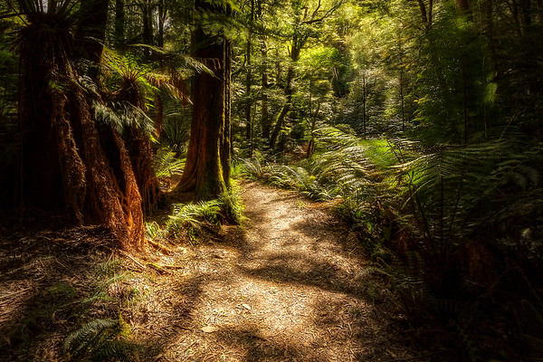 (2093) Melba Gully, Victoria, Australia