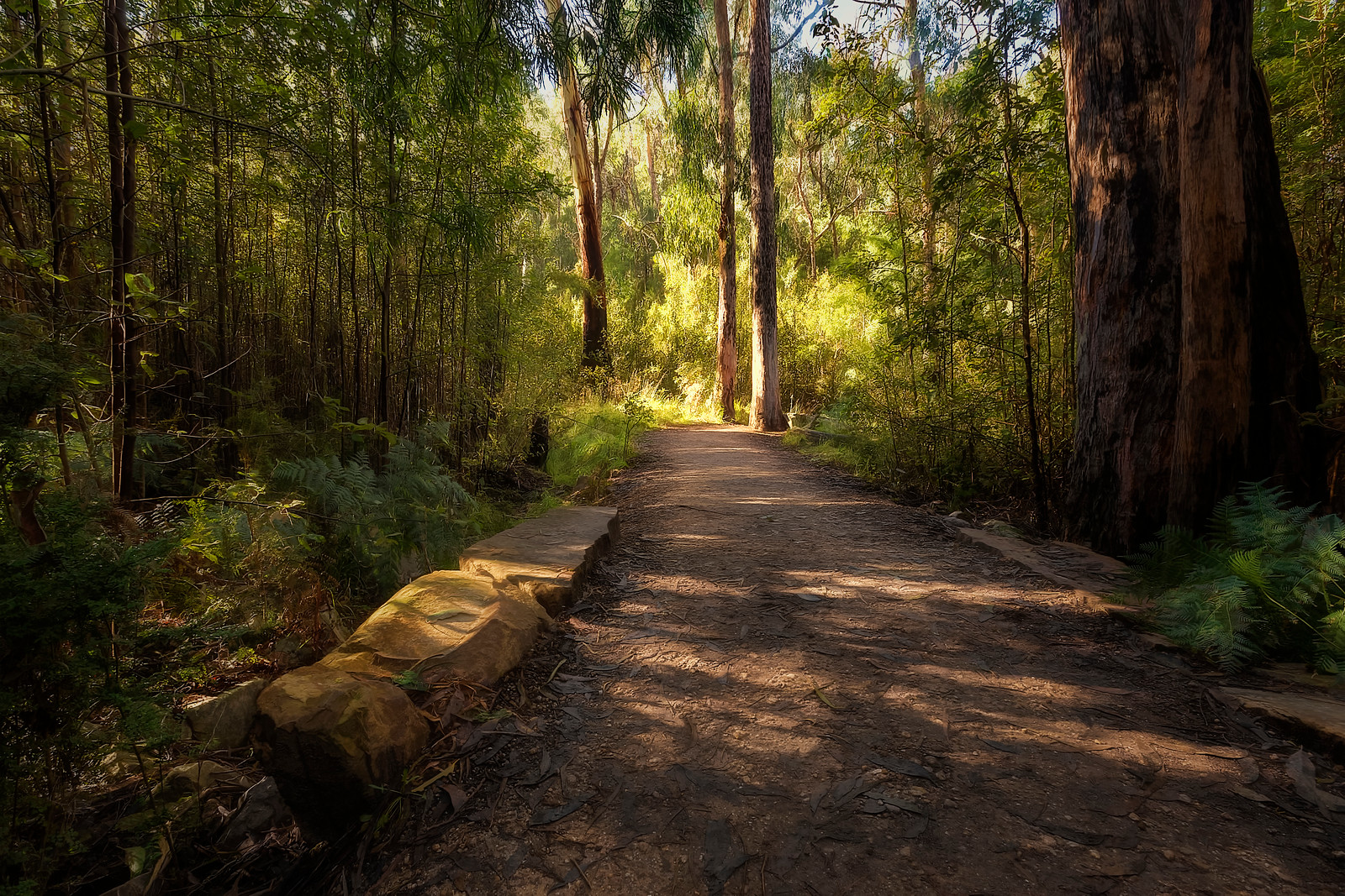 (2301) Halls Gap, Victoria, Australia