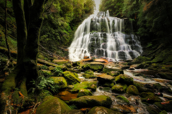 (2403) Nelson Falls, Tasmania, Australia