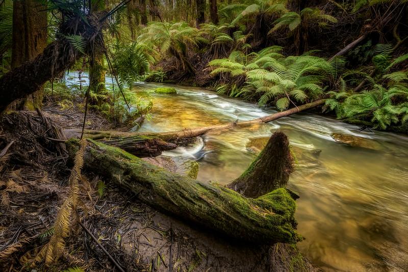 (2514) Triplet Falls, Victoria, Australia