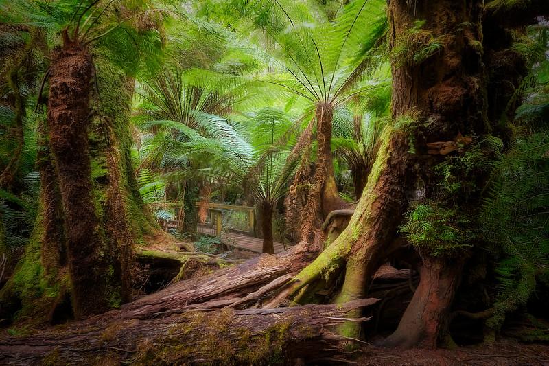 (2356) Maits Rest, Victoria, Australia