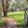 (1962) Cootamundra, New South Wales, Australia