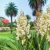 (1601) Geelong, Victoria, Australia